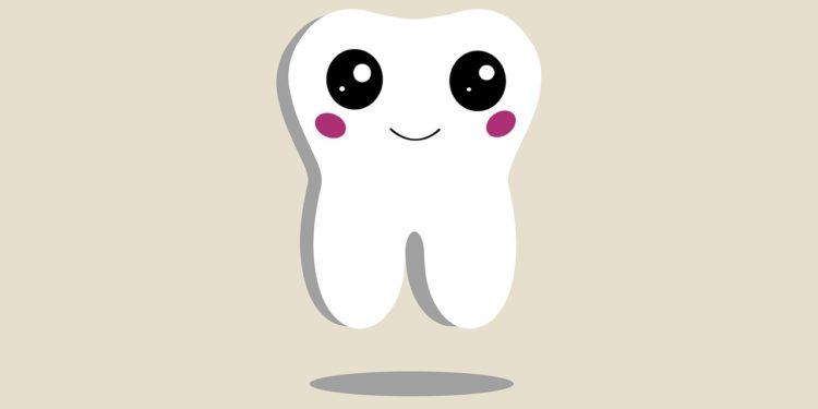 Veneers – die ästhetische Zahnverblendung